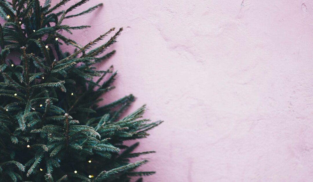 Eco-Friendly Christmas Decoration Ideas