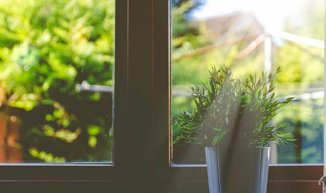 Going Green: Prepare Your Home for 2020
