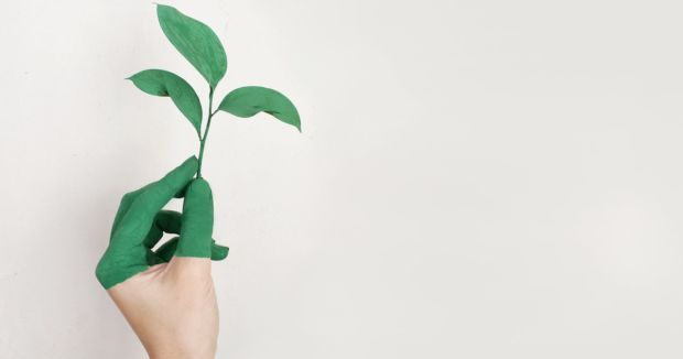 Benefits of Using Eco-Friendly Paint for Your Home